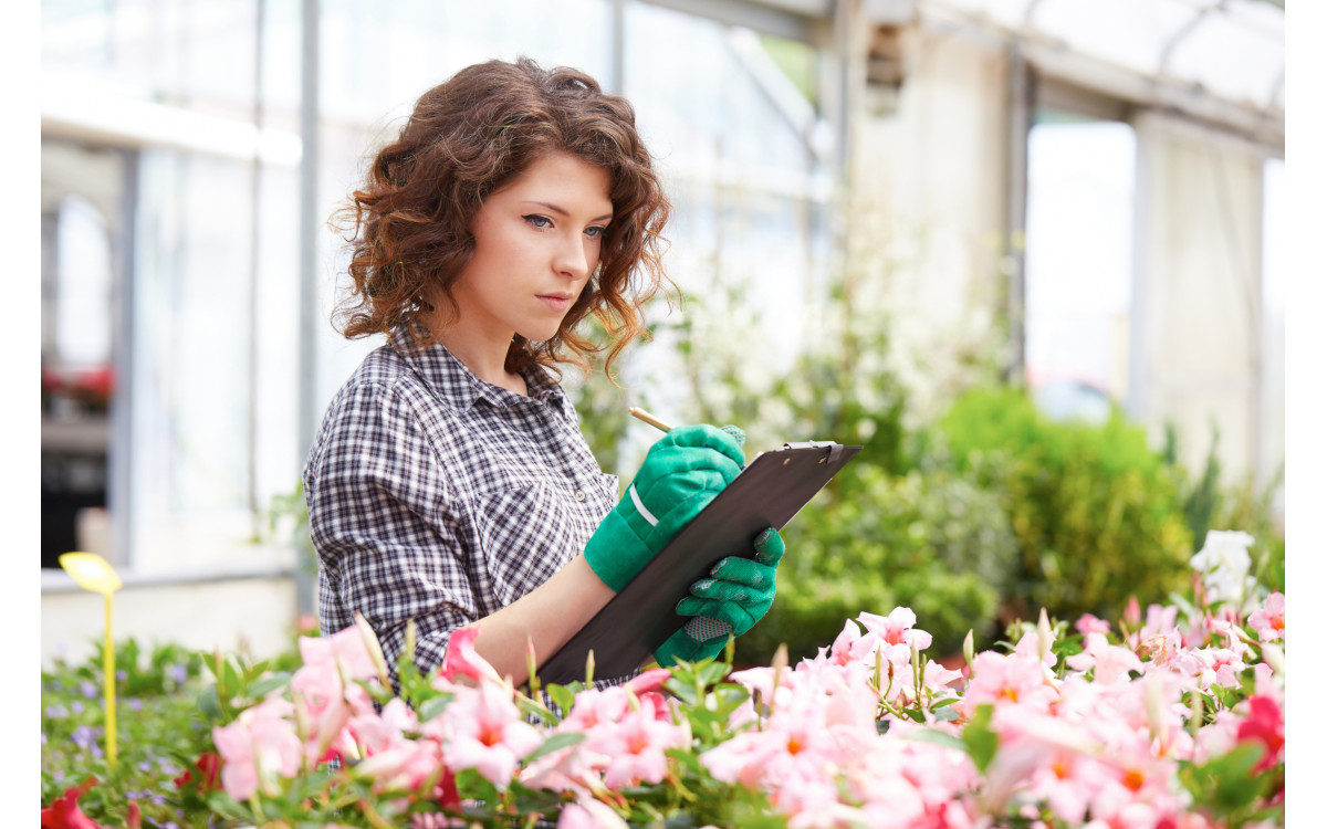When Is The Best Time To Visit The Plant Nursery?