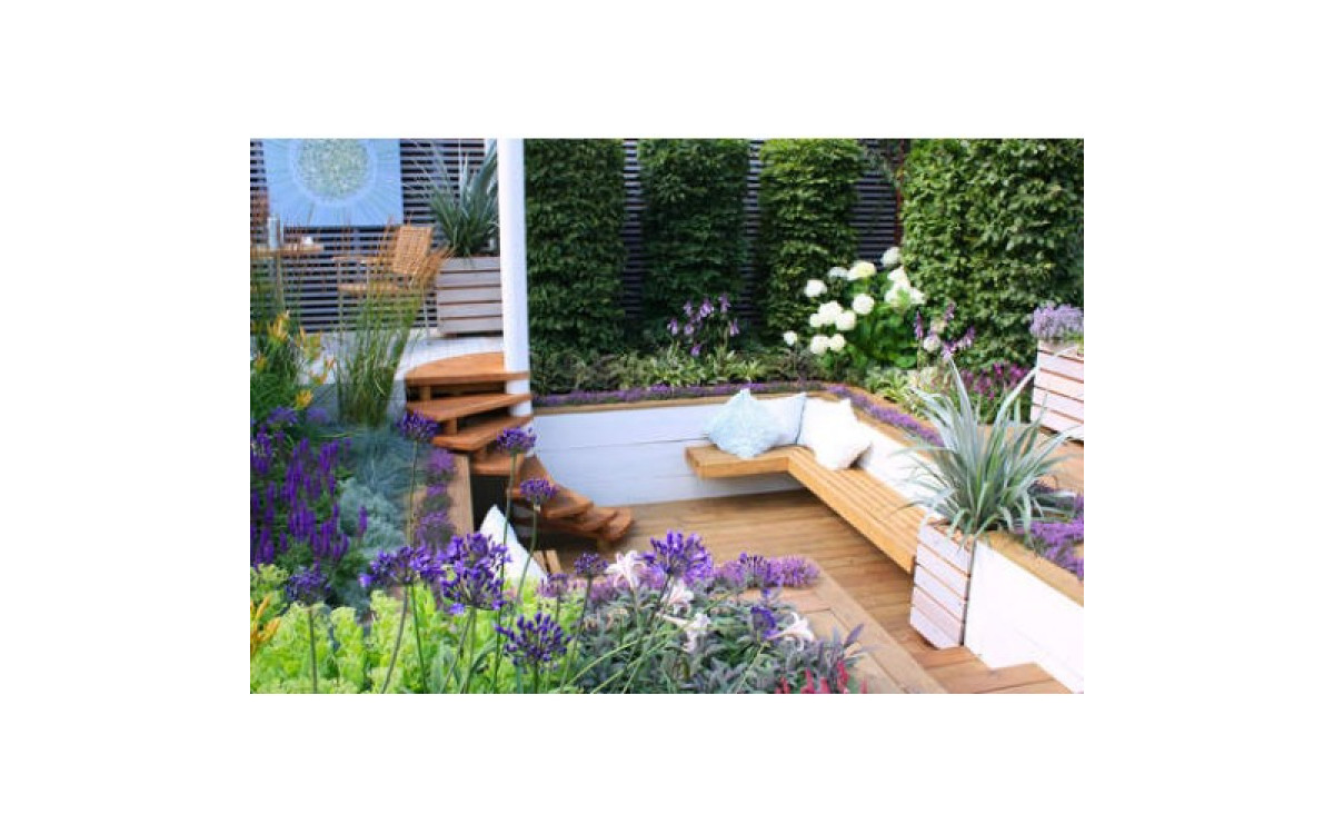 Patio & Balcony planting and gardening ideas