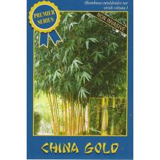 Bamboo China gold